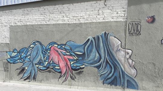 streetart_cordoba12©virages